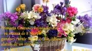 La Multi Ani cu ocazia zilei de 8 Martie!!!